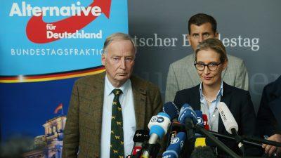 "AfD-Fraktionschefin rechnet mit baldigem GroKo-Ende – Gauland: Nahles ist ""konsequent"""