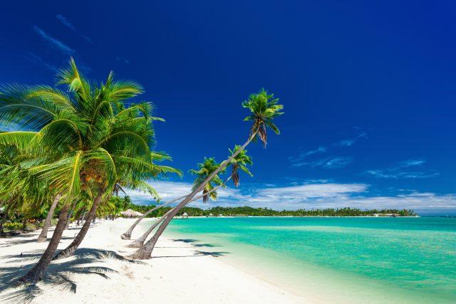 Um Klima zu retten: Claudia Roth fliegt 41.000 km um die Welt – inklusive Traumziel Fidschi