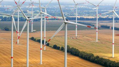 Vera Lengsfeld: Gegen den Windmühlenwahn