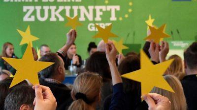 """Grünen-Politiker Schlauch warnt die Grünen: """"Wer hoch fliegt, kann auch tief fallen"""""""