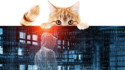 """""""Datensicherheit"""" – Das wissen Google, Facebook und Microsoft wirklich über Sie"""