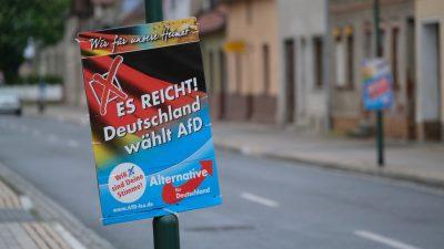 Freiburg: Wahlkampf-Boykott gegen AfD – Linksextremisten fälschen Plakate