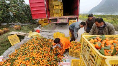 Entwicklungshilfe: China erhält von Deutschland Gelder in Millionenhöhe