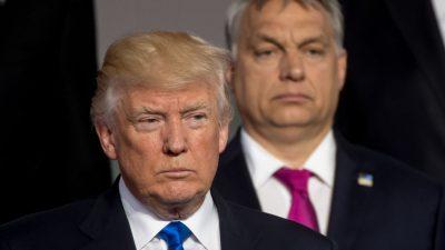 Orbán bei Trump: So wichtig ist Ungarn für die geopolitische Strategie der USA in Europa