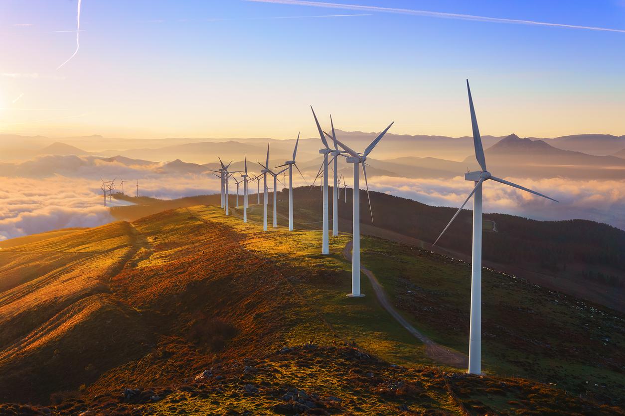 """Windkraft droht """"Luft auszugehen"""": Umweltbundesamt warnt vor weiterem Einbruch in der Branche"""