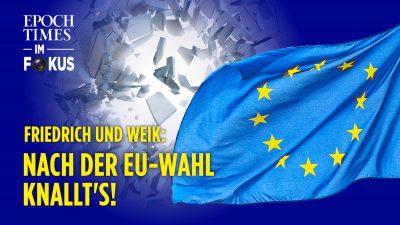 Friedrich&Weik: Nach der EU-Parlamentswahl kommt das große Beben