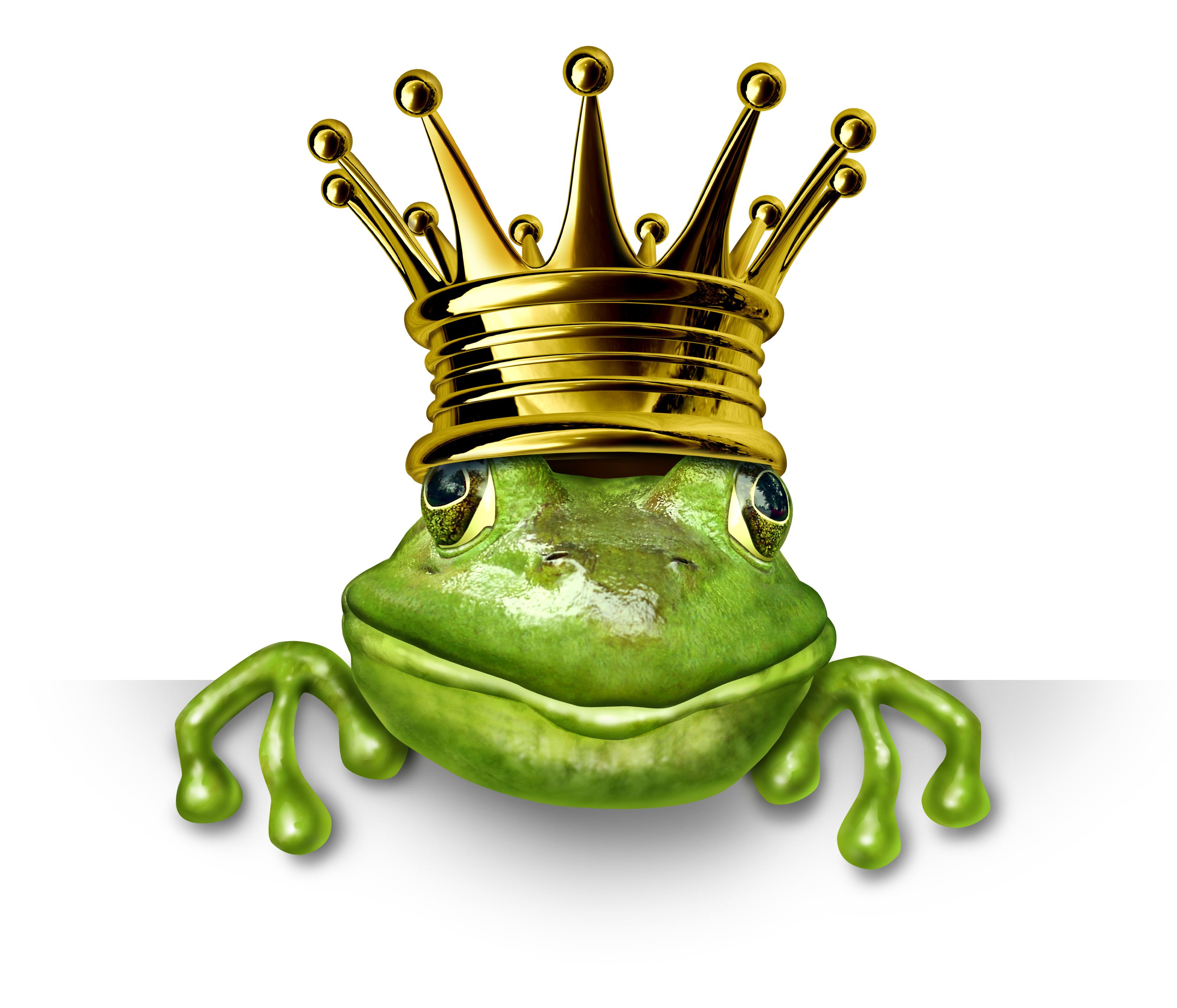 Sonntagsmärchen: Der Froschkönig