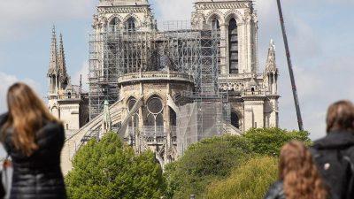 Deutsche Expertin empfiehlt bei Notre-Dame Dachstuhl aus Stahl – Franzosen wollen eine Holzkonstruktion