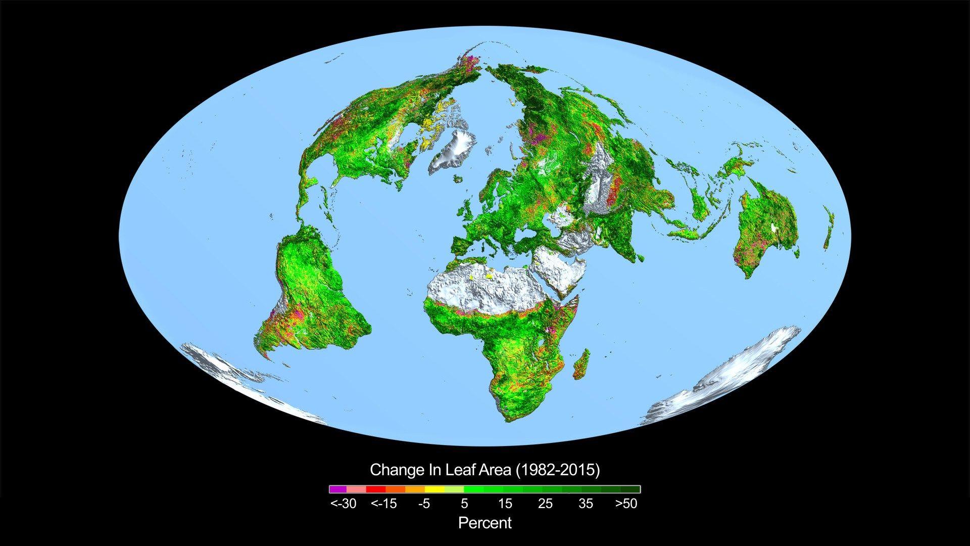 """""""Die Welt wird immer grüner""""- Aus einer öffentlichen Anhörung über """"Welternährung und Klimawandel"""""""