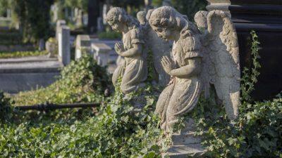 Der verdrängte Tod – von Herbert Ludwig