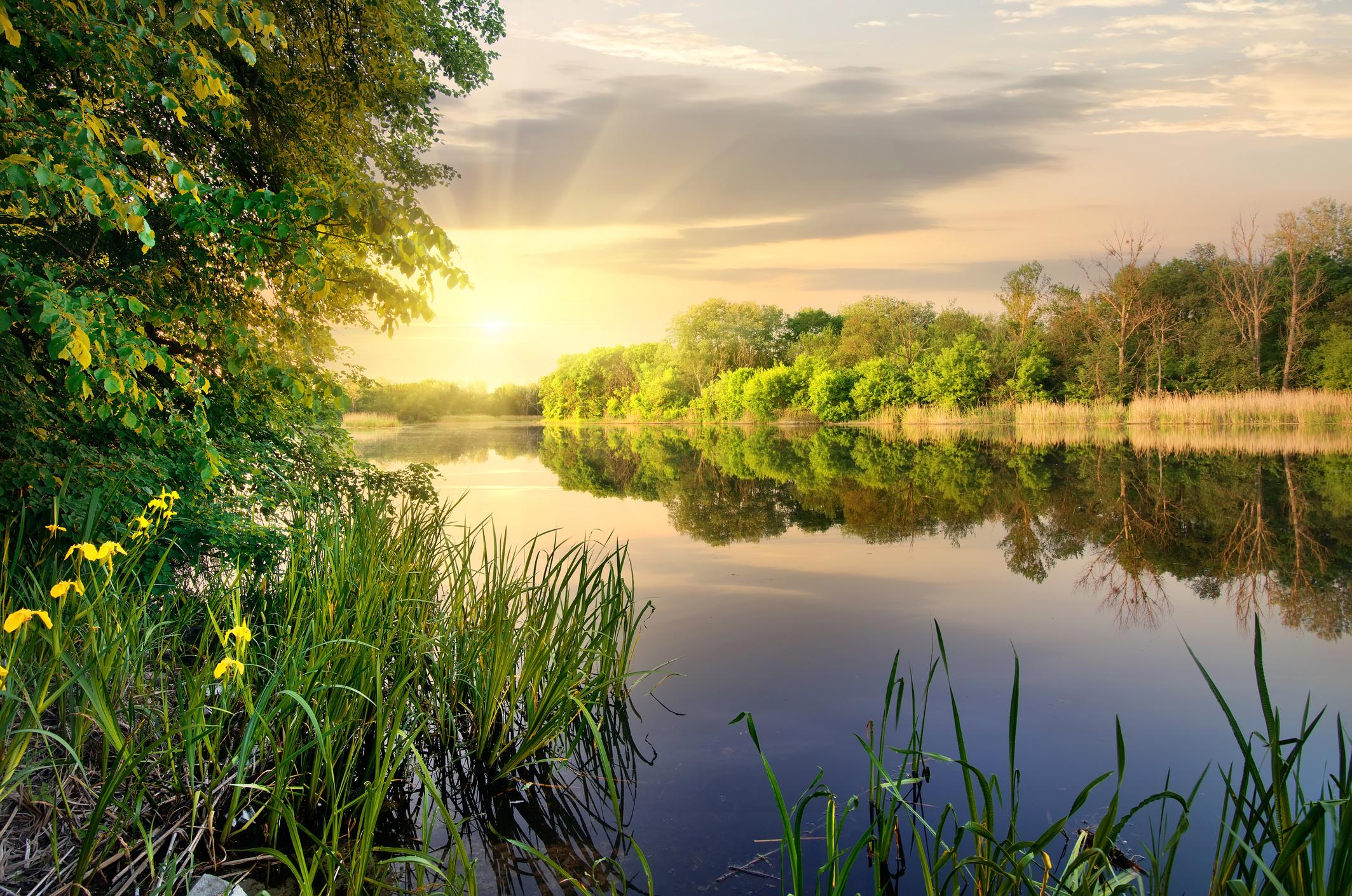 Klassik des Tages: Die Wassermusik