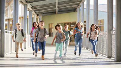 """Lehrerverbandspräsident: Gendertoiletten sind """"von außen aufgezwungene Frühsexualisierung"""""""
