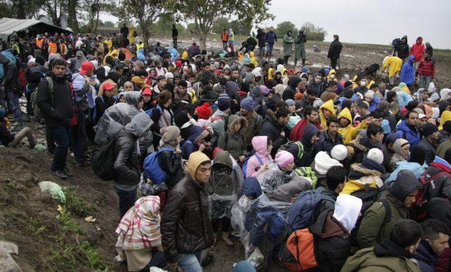 Zahl der Asylbewerber steigt auf knapp 1,8 Millionen - Mehr Asylanträge aus der Türkei