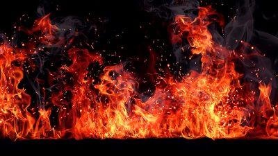 """""""Mein Hund bedeutet mir alles"""" – Mann springt in Flammeninferno um besten Freund zu retten"""