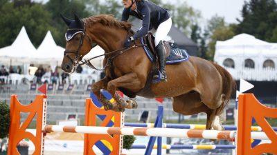 Chiemsee Pferdefestival 2019 empfängt begeisterte Pferdefans aus der ganzen Welt