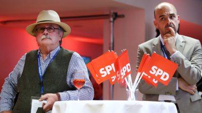 Emnid: SPD stagniert in der Wählergunst – AfD gewinnt