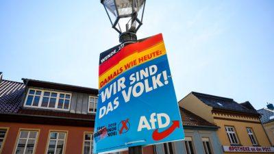 Jürgen Fritz Wahlanalyse: Löst die AfD die SPD als neue Arbeiterpartei ab?