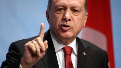 """Steinbach nennt Erdogans Syrien-Offensive """"Himmelfahrtskommando"""""""
