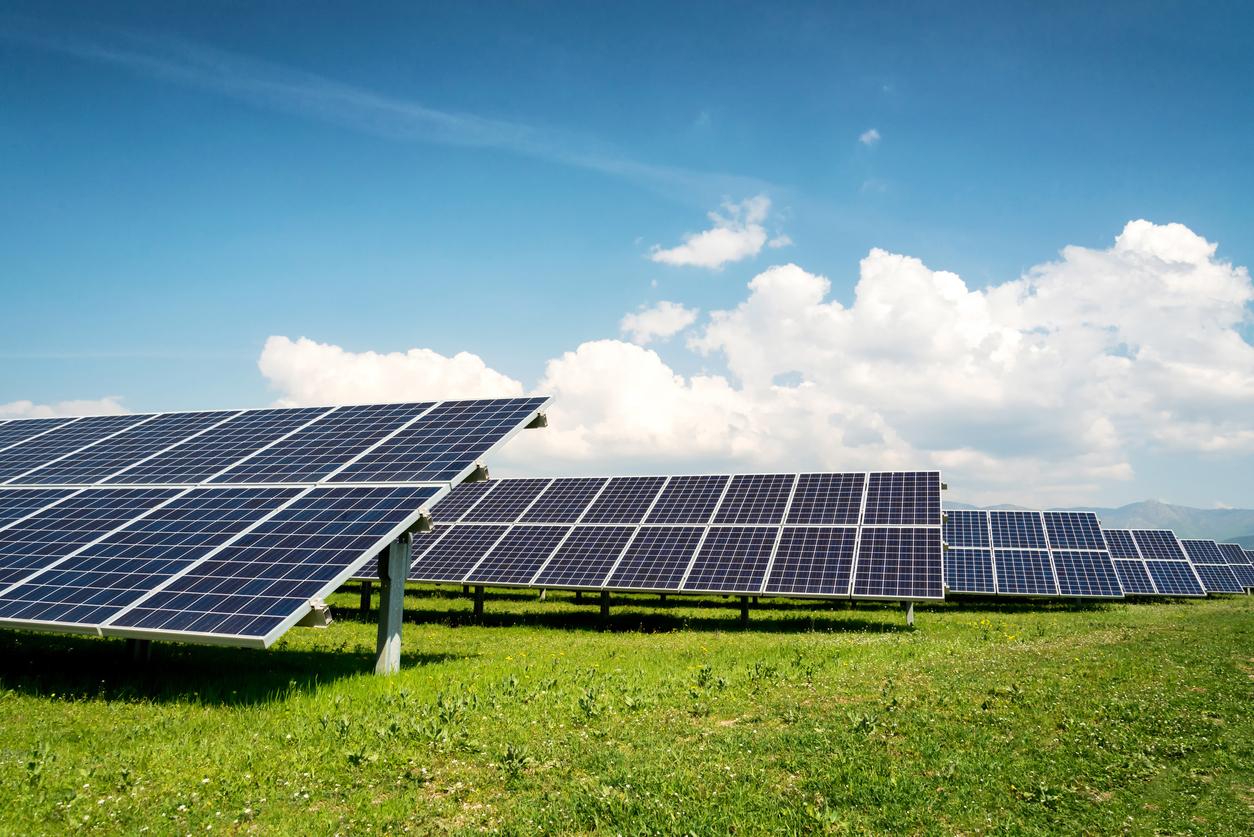 Photovoltaik vom Acker: Deutsche Gesetze verhindern Doppelnutzung für Energie- und Landwirtschaft