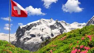 Ökoparteien im Alpenland auf Erfolgskurs bei Schweizer Parlamentswahl?
