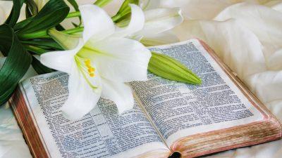 Sonntagsmärchen: Die drei Königstöchter