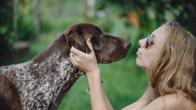 """Tierschützerin schläft bei todkrankem Hund, damit er nicht allein ist: """"Sein Leben ist wertvoll"""""""