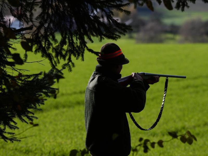 Bewährungsstrafe für Jäger in Berufungsprozess wegen tödlicher Schüsse auf Frau