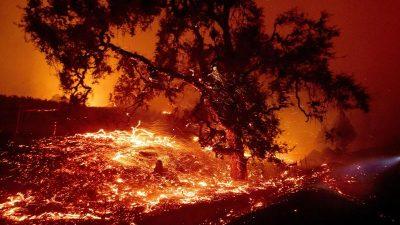 Mehrere Großbrände in Kalifornien – Tausende Einwohner evakuiert