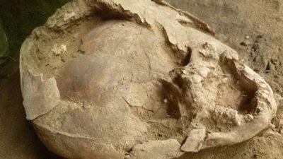 Helme aus Kinderschädeln: Rätsel um 2000 Jahre alte Kleinkind-Gräber aus Ecuador