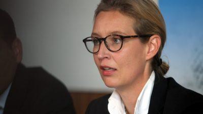 Weidel kandidiert in Baden-Württemberg als AfD-Landesvorsitzende