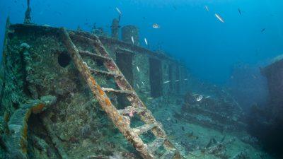 Jahrhundertealte Schiffwracks in Schweden entdeckt