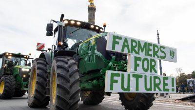 Höfesterben und Agrarfreihandel: Landwirte verlieren, Lebensmittelindustrie profitiert (Teil 3)
