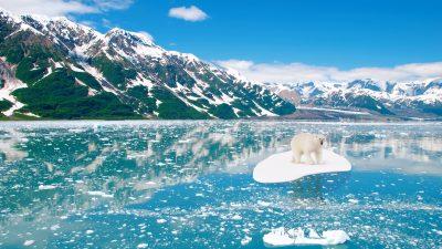 """Drei Tage noch: Klimawissenschaft sagte Atomkrieg und """"sibirisches"""" Großbritannien bis 2020 voraus"""