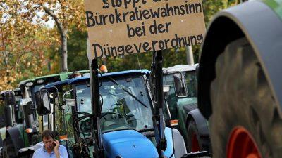 """Merkel lädt Bauern zum """"Agrargipfel"""" ein"""