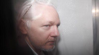 Bundestagsabgeordnete setzen sich für Wikileaks-Gründer Assange ein