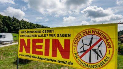 Kritik an Windkraft wird lauter: Handelt Deutschland beim Klimaschutz gegen das Grundgesetz?