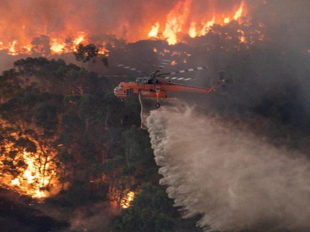 Feuertornado Australien