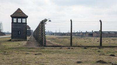 Gedenken an den 75. Jahrestag der Befreiung von Auschwitz: Eine besondere Geste der Versöhnung
