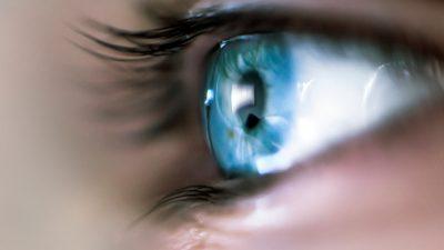 Forscher der TU München bestimmen Schutzengel-Proteine der Augen