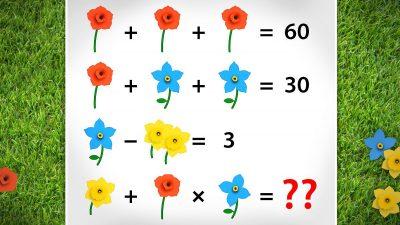 Rätselhafte Blumen und Ballons – Heben Sie beim zweiten Rätsel nicht ab