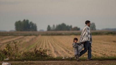 Zahl von illegalen Migranten auf Balkanroute erheblich gestiegen