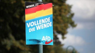 Einzelne AfD-Abgeordnete werden laut Medien von Verfassungsschutz observiert