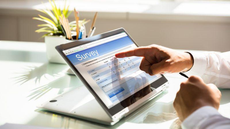 Meinungsumfragen im Internet sind oft statistisch unzulänglich und nicht repräsentativ.