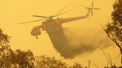 Verheerende Buschbrand-Saison im Südosten Australiens vorbei
