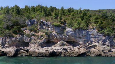 Mehr Meer: Verbesserten Meeresfrüchte die kognitiven Fähigkeiten der Neandertaler?