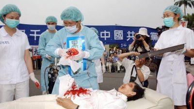 Experten besorgt über Menschenrechtslage in China – Bundesregierung zum Handeln aufgefordert