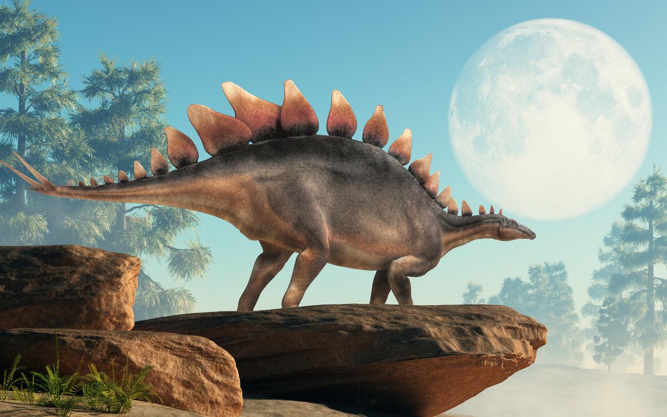 Zur Zeit der Dinosaurier dauerte ein Tag etwa 23 Stunden und 33 Minuten