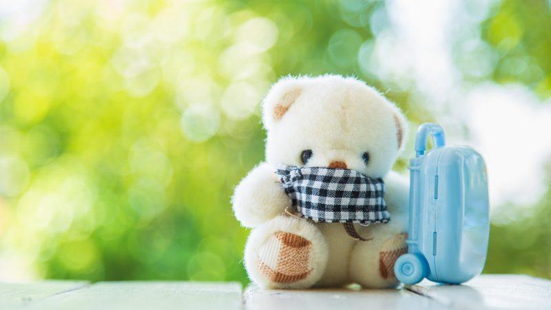 Bildergebnis für Teddy mit Mundschutz