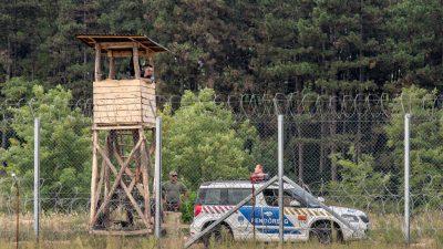 Mitteleuropa in der Corona-Krise: Grenzkontrollen und -schließungen