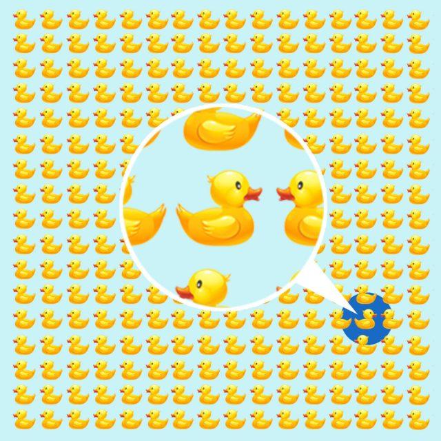 Alle Enten schwimmen in dieselbe Richtung - bis auf Eine.